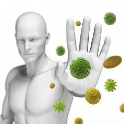 Антиоксиданты – это щит для вашего организма