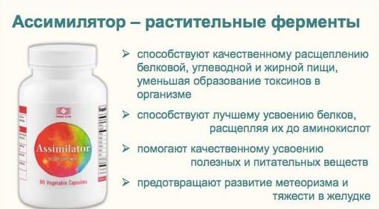 Ассимилятор улучшает пищеварение