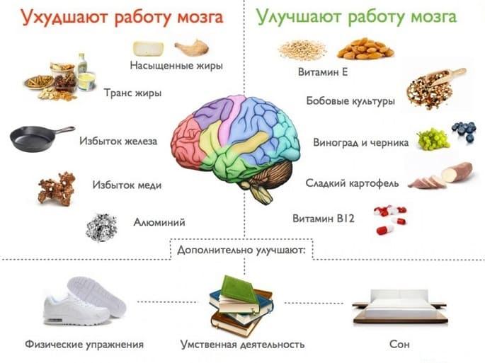 что улучшает, а что ухудшает работу мозга
