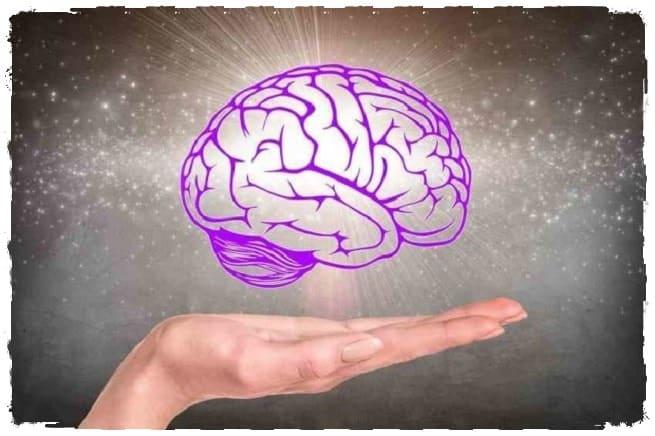 Как помочь мозгу оставаться здоровым долгие годы?
