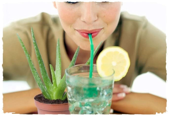 Можно ли очистить организм с помощью детокс очистки и что эта очистка даст вашем здоровью?